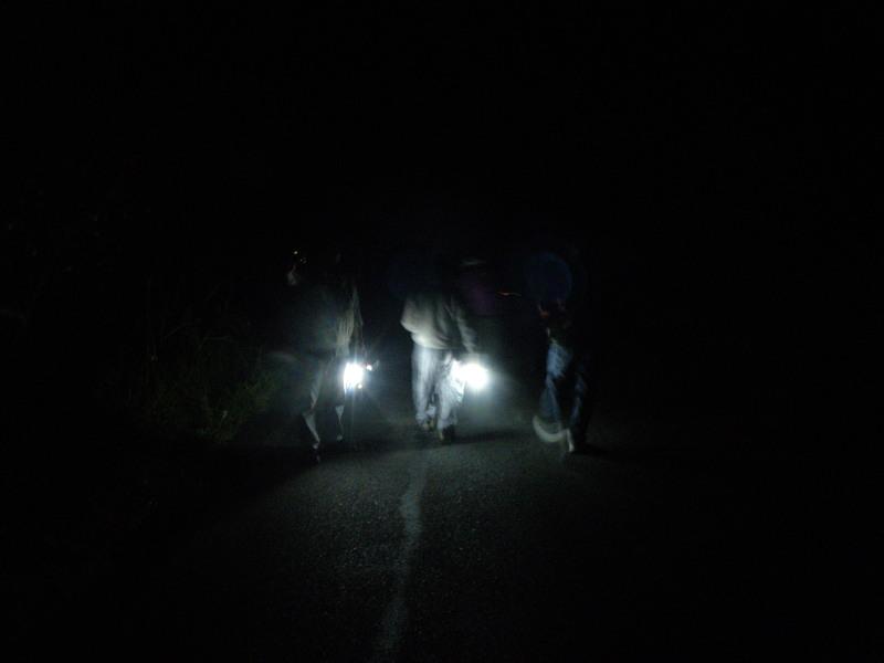 夜のガイドのひとコマ(夜のデンデラ野編)_f0075075_83359.jpg