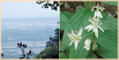 高尾山ウォーキング_c0051105_10574829.jpg