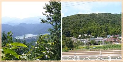 高尾山ウォーキング_c0051105_1144557.jpg