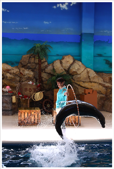 鳥羽水族館とお知らせ_c0112313_9314611.jpg