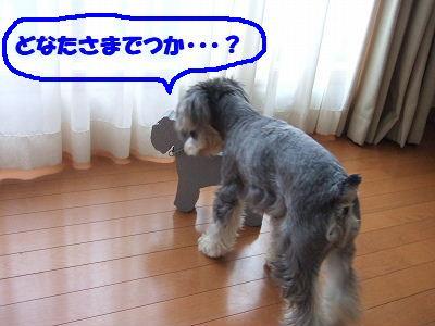 b0143879_1340031.jpg
