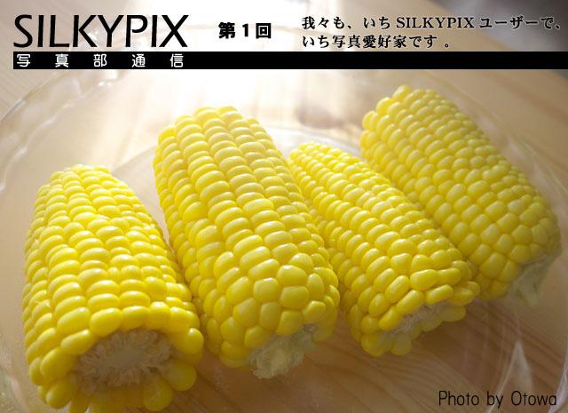 SILKYPIX写真部通信 第1回 我々も、一(いち)SILKYPIXユーザーで、一(いち)写真愛好家です!_c0168669_17182075.jpg