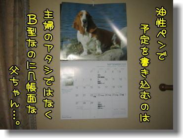 f0204072_11205834.jpg