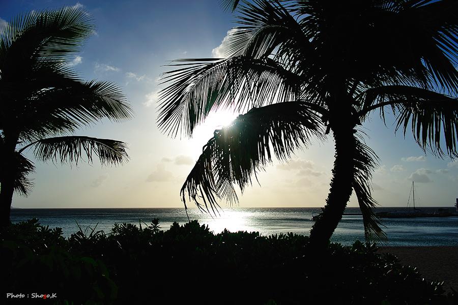 沖縄を旅する・・・(No,4)_f0186496_046107.jpg