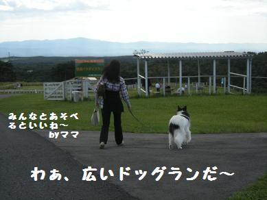 f0081100_1946399.jpg