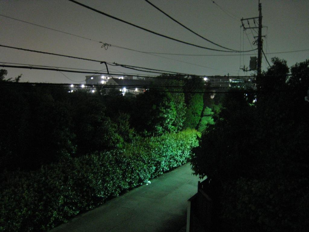 【散撮】涼しい夜_f0141609_2314404.jpg