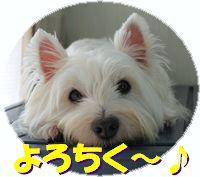 f0084422_11481797.jpg