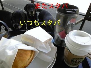 f0148927_18341029.jpg