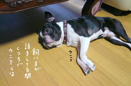 f0170072_12305662.jpg
