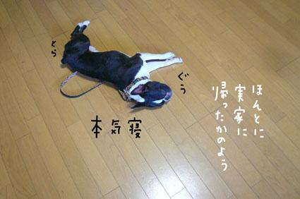 f0170072_12305959.jpg