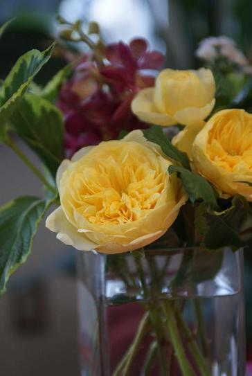 お花の話。_f0202682_1230715.jpg