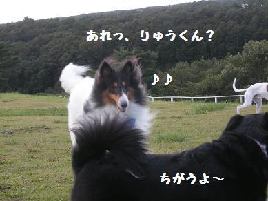 f0081100_22484463.jpg