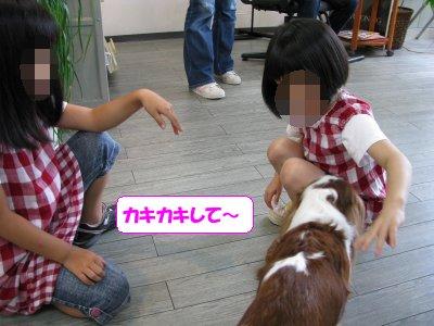 b0185323_14291832.jpg