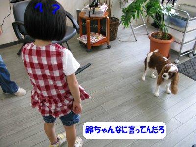 b0185323_1432025.jpg