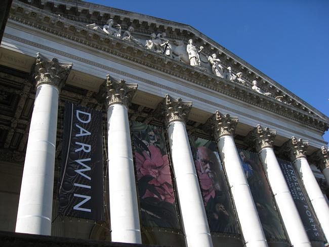 The Fitzwilliam Museum_a0086828_484212.jpg