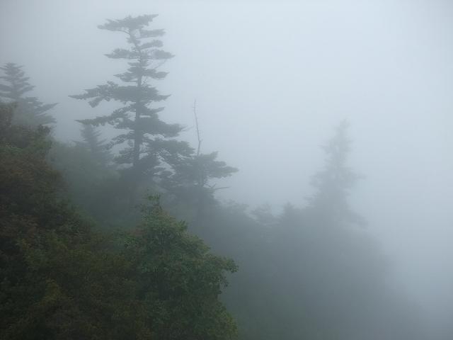 四国迷走ツーリング 石鎚山の朝_f0050534_814957.jpg