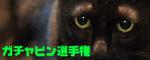 f0166234_022563.jpg