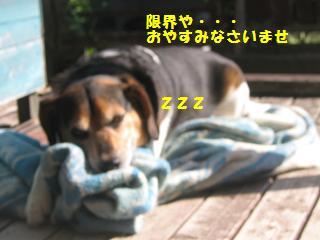 d0104209_22175831.jpg