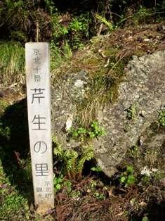 古寺巡礼 ④ (かくれ里)&東山慈照寺_c0156749_1115216.jpg