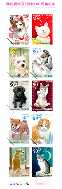 animal loving week_f0170352_10535693.jpg