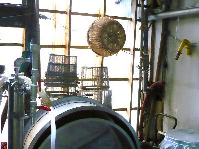 庄屋さんの酒蔵 『寒梅酒造』_f0193752_1825126.jpg
