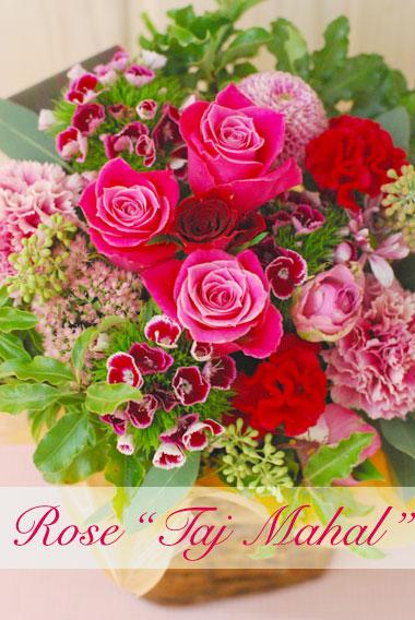 """ROSE\""""タージマハール\"""" 秋がお似合いのピンクレッド_a0115684_045862.jpg"""