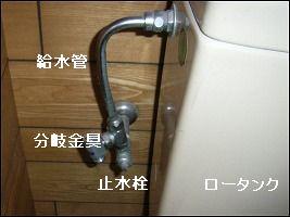 b0003400_2131017.jpg