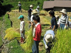 大収穫。_b0131012_2013047.jpg