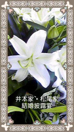 井本家・松尾家結婚披露宴!!_d0051146_19103352.jpg