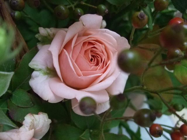 オークリーフ(バラ・ベビーディンブルと野バラの実のアレンジメント)_f0049672_1901169.jpg