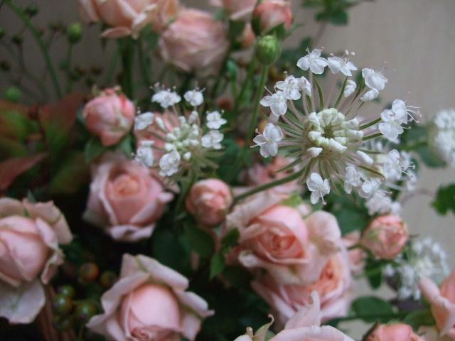 オークリーフ(バラ・ベビーディンブルと野バラの実のアレンジメント)_f0049672_1932338.jpg