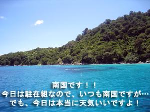 f0144385_22564989.jpg
