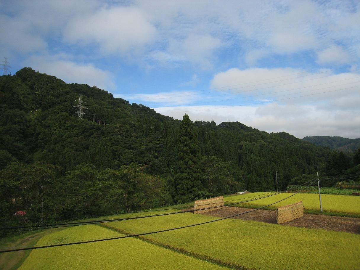 福島へ〜〜_f0141609_22432832.jpg