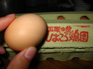 ひよころ鶏園さんのたまご→うまいよん_f0182936_273285.jpg