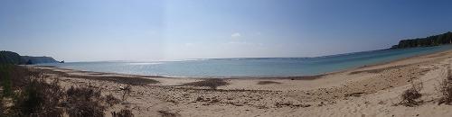 ジュゴンの生きる海辺の観察会_c0180460_672625.jpg