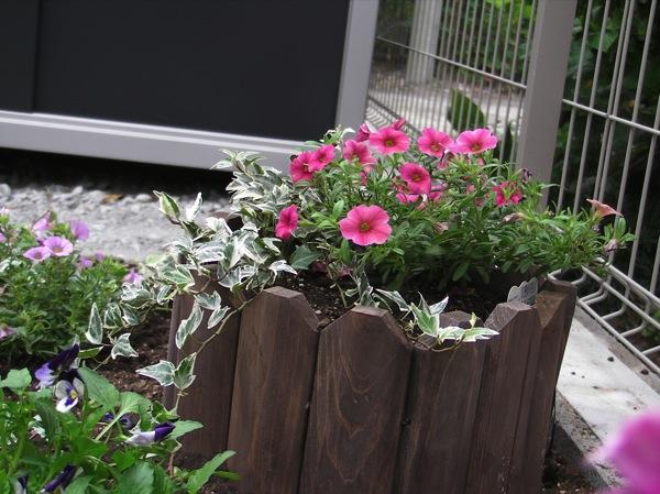 花壇をつくってみる_f0198764_22421932.jpg