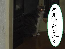 b0112380_1935012.jpg
