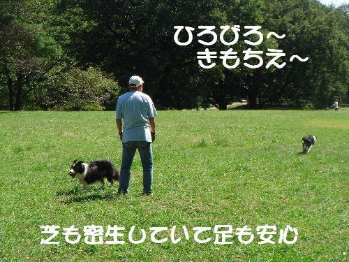 b0101991_16593352.jpg