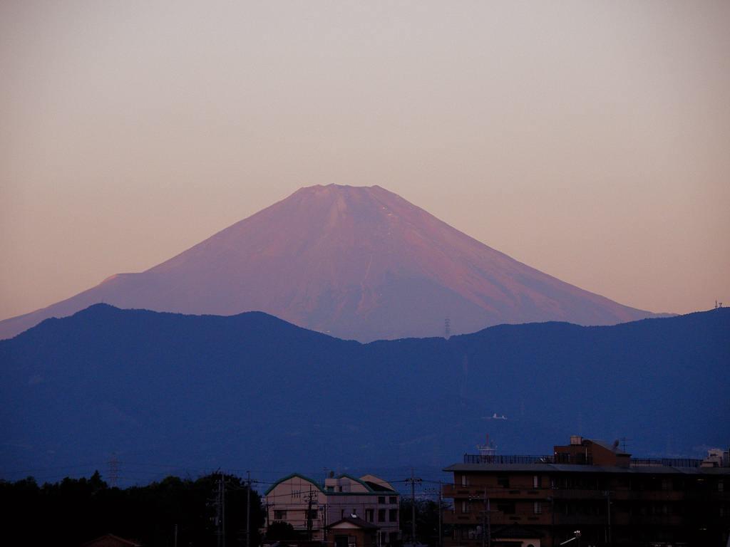 コガモが来ました/赤富士_b0024798_53325.jpg