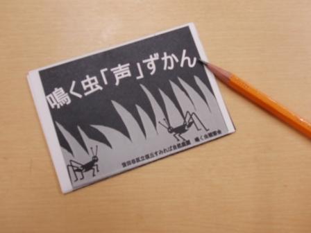 「草木染め」と「鳴く虫観察会」_b0049307_1254440.jpg