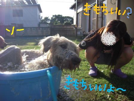 f0176830_1943360.jpg