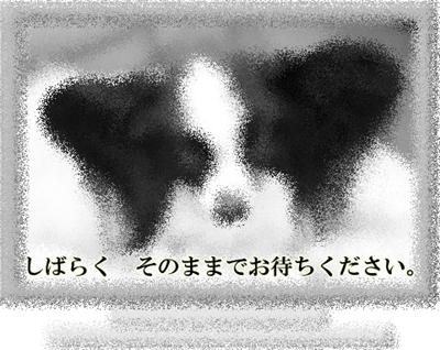 d0013149_0372215.jpg