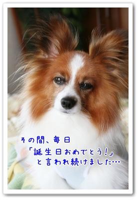 d0013149_0521973.jpg