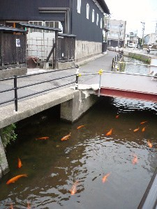 橋平酒造 醸室(かむろ)_f0193752_1192916.jpg