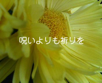 c0007384_15314452.jpg