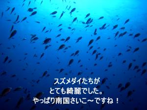 f0144385_771358.jpg