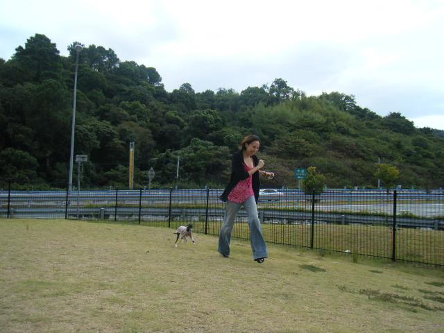 徳島~香川へ行く。_a0050302_1425670.jpg