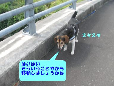 d0104209_10124014.jpg