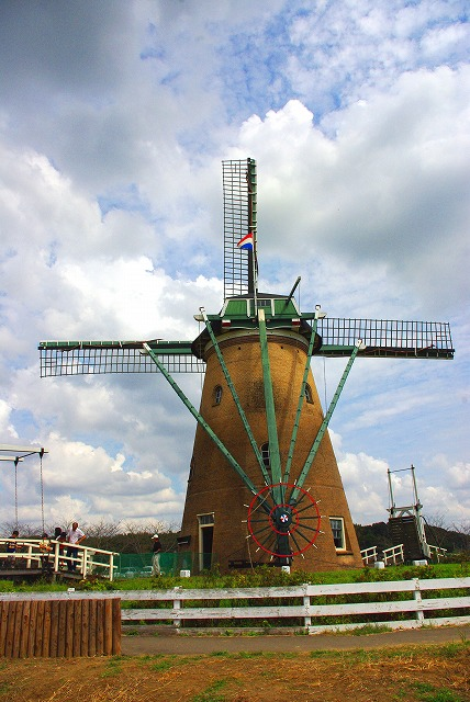 windmill (風車)_d0147812_14101575.jpg