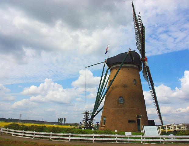windmill (風車)_d0147812_14103150.jpg